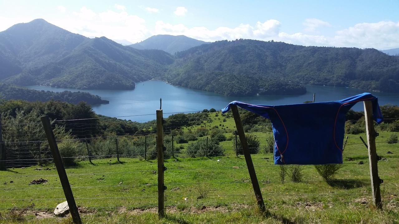 Day 68 – 78: Abel Tasman & QueenCharlotte