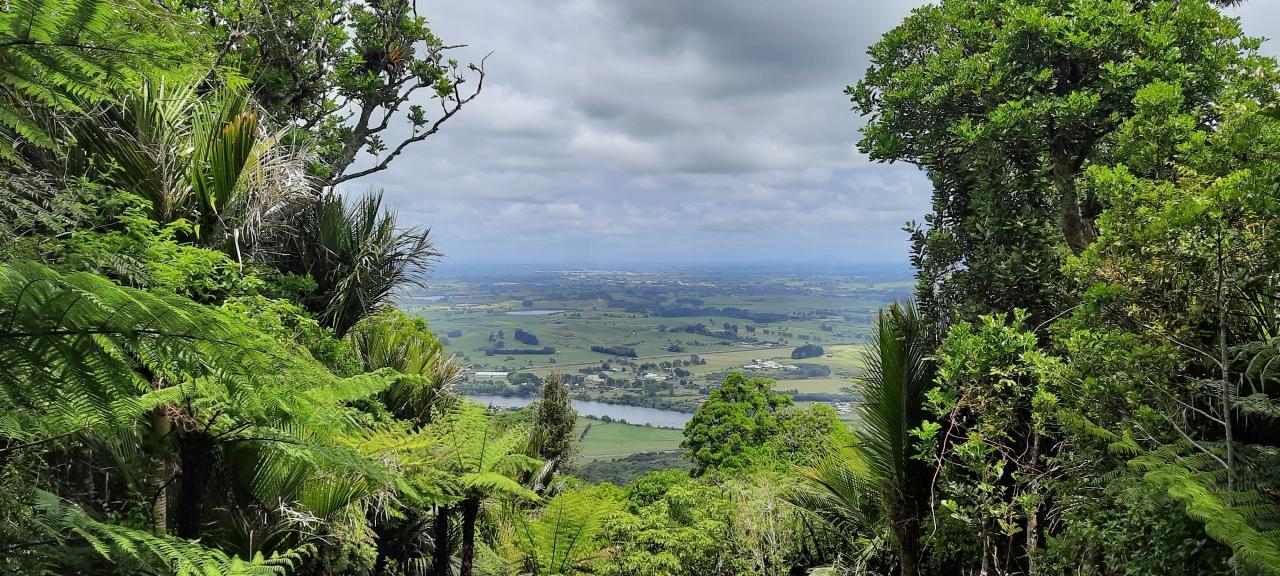 Rangiriri to Ngaruawahia