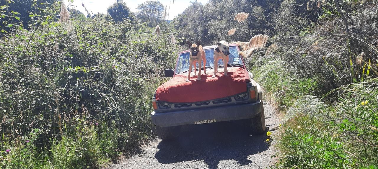Owhango – 42nd Traverse –Tongariro